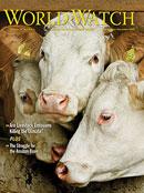 Животновъдството е отговорно за над 50% от всички парникови емисии - доклад на Worldwatch Institute