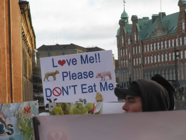 Вие разглеждате изображения от: Новини след конференцията в Копенхаген